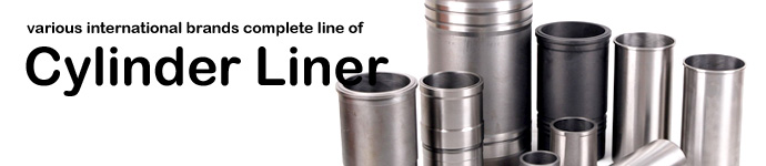 DPS offers various international brands complete line of Cylinder Liner