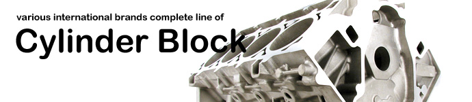 Various international brands complete line of Cylinder Block