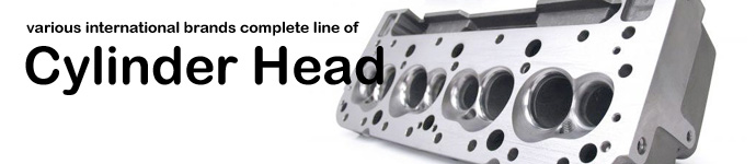 Various international brands complete line of Cylinder Head
