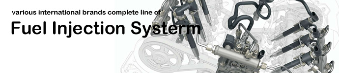 DPS offers various international brands complete line of Fuel Injection Systerm