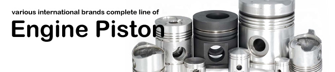 DPS offers various international brands complete line of Engine Piston