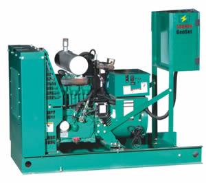 Cummins Gas Engine Generator Sets